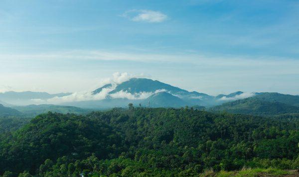 Thodupuzha Hills